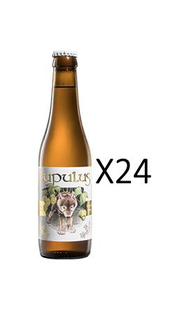 24 x  Lupulus Blonde