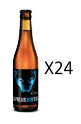 24 x Lupulus Hopera