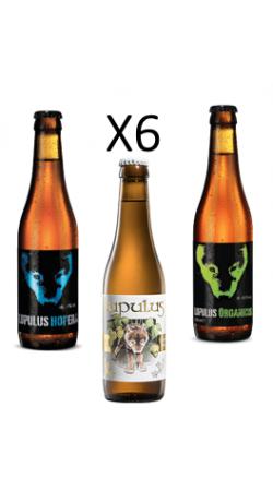 Pack Lujpulus Hopera, Blonde, Organicus