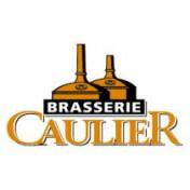Caulier Development
